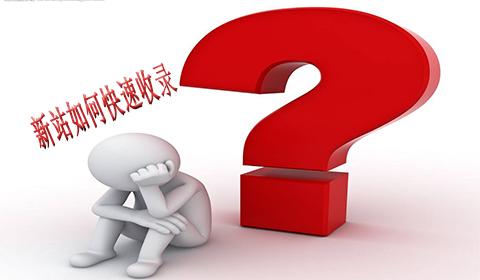 「王通SEO」刚做的新网站如何被搜索引擎快速收录?